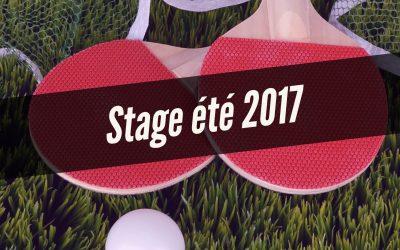 Stage été 2017